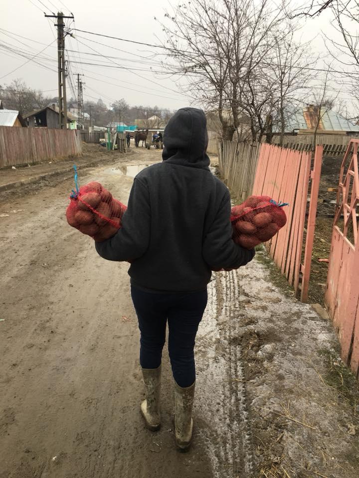 Ziua 14 – O tona de cartofi